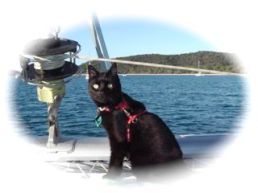 Cilla on bow, Great Keppe Island