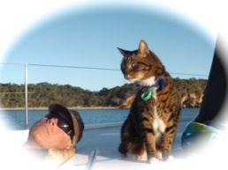 Tiger on bow, Great Keppel Island, QLD