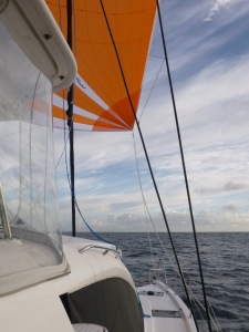 Sengo flying her new spinnaker